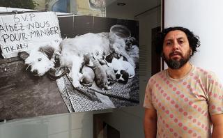 Exposición muestra la indigencia desde el drama de los animales