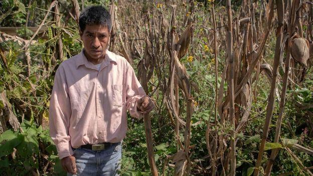 En 15 años ningún médico ha visitado a los hijos enfermos de Rosendo Mayagua. (Foto: BBC Mundo)