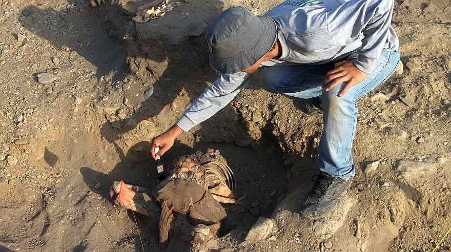 Este es el cementerio preínca descubierto en Huanchaco [FOTOS]