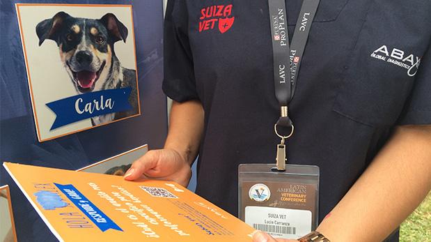 [Foto] Suiza Vet y ABAXIS apuestan por perros sin hogar