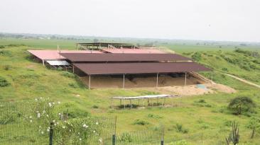 Tumbes: Complejo Cabeza de Vaca amenazado por expansión urbana