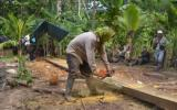 Ucayali: desalojan a madereros ilegales instalados en reserva