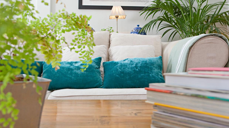 Conoce los beneficios de tener plantas en el hogar for Decoracion hogar lima