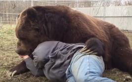 La tierna amistad entre un hombre y su oso conmueve a miles