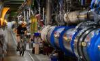 Una comadreja obligó a parar el Gran Colisionador de Hadrones