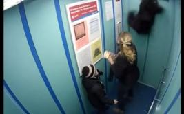 Perro se enreda y casi muere ahorcado en ascensor [VIDEO]