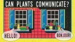 ¿Sabías que las plantas pueden hablar entre ellas? [VIDEO] - Noticias de artemisa