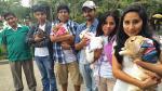 Conoce a esta brigada pro conejos - Noticias de luis huamani