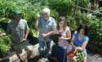 La familia que produce miles de kilos de comida en su patio