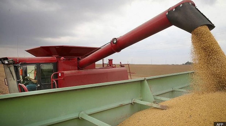 Partes importantes de la producción de soja argentina se comercializan en el mercado
