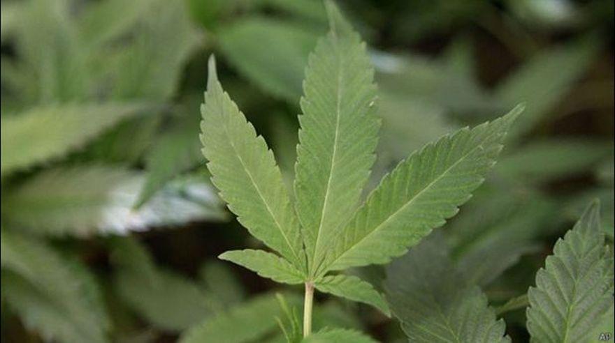 Estas 10 drogas fueron legales hace unos años