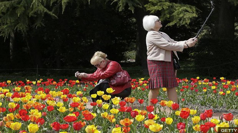 Tulipanes vs iPhone... (Foto: BBC Mundo)