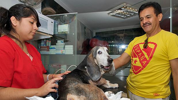 Fredy Ormeño acompaña a su perro Blacky de 13 años de edad.