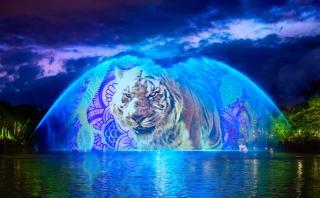 Animal Kingdom se prepara para abrir sus puertas de noche