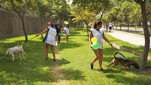 [Foto] San Borja, al frente en cuidado de mascotas