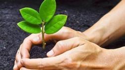 Crecimiento verde ¿en la agenda electoral?, por Elsa Galarza