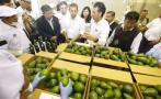 Produce invirtió S/6,3 mlls. en CITE Agroindustrial en Huaura