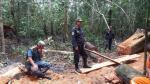 Dos hombres fueron detenidos por talar árboles ilegalmente - Noticias de martin olaya