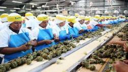 Agroexportadora venderá por US$150 millones este año