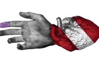 Amor por el Perú, por Carmen McEvoy