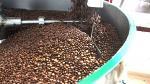 Minagri: El cultivo de café es el sustento de 223 mil familias - Noticias de resolución ministerial