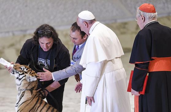 El papa Francisco se pegó un susto ante un tigre de bengala
