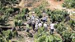 La huella de Melka en la selva: cuestionada siembra de cacao - Noticias de fútbol peruano 2013
