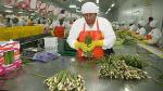 Minagri lanza Agroinvierte para atraer inversión en el sector - Noticias de manuel ramos campos