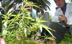 De 10 escolares que consumen drogas 4 empezaron frente a padres