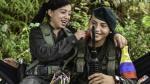 ¿Cómo, cuándo y dónde será la dejación de armas de las FARC? - Noticias de esto es guerra fotos