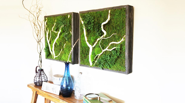 Que las plantas brillen en tu pared con estos cuadros for Plantas en la pared