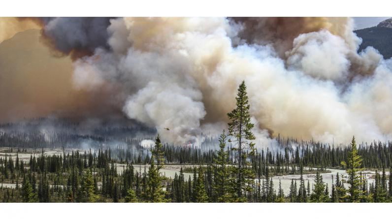 Los ganadores de la última edición del premio Atkins CIWEM de fotografía ambiental tienen a Sara Lindström como acreedora del máximo galardón y del título de Fotógrafa Ambiental del Año 2016 por esta imponente imagen de un incendio forestal en Alberta, Canadá.