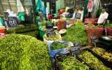 INEI: En junio se registró mayor inversión en bienes de capital