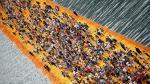 Más de 1 millón de personas caminaron sobre las aguas en Italia - Noticias de reciclar