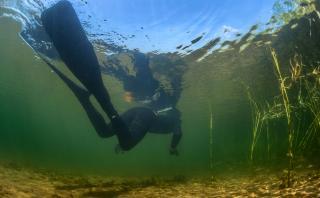 Conoce las profundidades de Escocia con esta ruta de snorkel