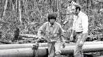 Oleoducto Norperuano: un elefante negro en la selva - Noticias de victor sanz
