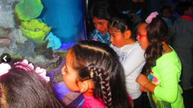 Huachipa: el martes 26 inauguran el acuario más grande del Perú
