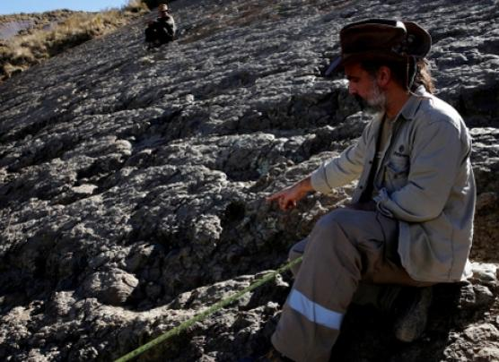 Hallan huella de gran depredador del jurásico en Bolivia