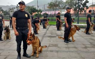 Fiestas Patrias: división policial canina se prepara para el 29