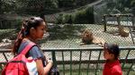 ¿En riesgo de inanición?: Animales de zoológico en Venezuela - Noticias de torturas