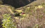 Alcalde de Uchumarca murió cuando su camioneta cayó a abismo
