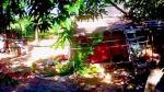 México: Asesinan a siete en el convulsionado estado de Guerrero - Noticias de muertos