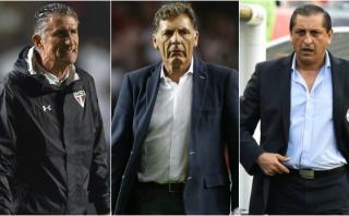 Selección argentina: hoy se elige al nuevo técnico albiceleste