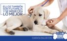 Al proteger a tu perro ayudas a un Wuf