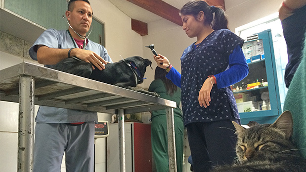 En este consultorio no solo se atiende a residentes de San Isidro registrados, también está abierto a personas de otros distritos.