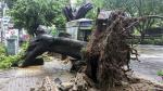 China: tifón Nida paraliza el sur del país [FOTOS] - Noticias de tifon