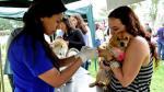 San Isidro se toma en serio a sus mascotas - Noticias de paul harris