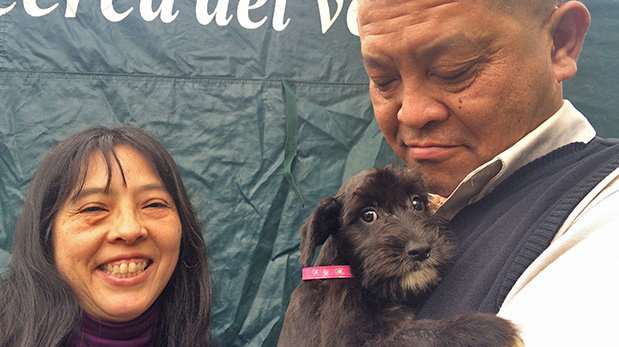 [Foto] Pecana, una cachorrita con suerte