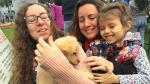 Pecana, una cachorrita con suerte - Noticias de muere atropellado