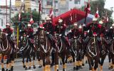 En 3 años han muerto 47 caballos de regimiento Mariscal Nieto